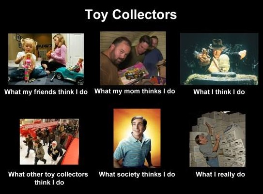 what-i-really-do-toy-collector-lol